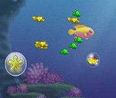 Balık Yetiştirme oyunu oyna