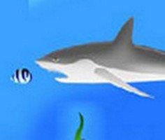 Büyüyen Balık oyunu oyna