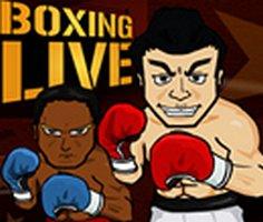 Boks Şampiyonası oyunu oyna