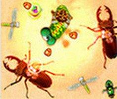 Böceğin Öfkesi oyunu oyna