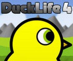 Ördeğin Yaşamı 4 oyunu oyna