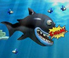 Büyüyen Balık 3 oyunu oyna