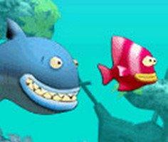 Küçük Balık Yeme oyunu oyna