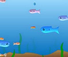 Büyüyen Balık 2 oyunu oyna