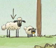 Koyunları Evine Götür oyunu oyna