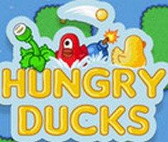 Aç Ördekler oyunu oyna