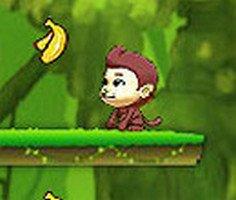 Maymun Muz Toplama oyunu oyna