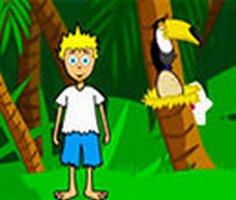 Eğlenceli Orman oyunu oyna