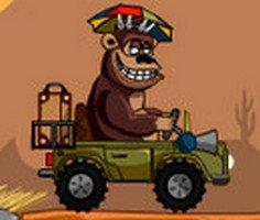 Büyülü Safari oyunu oyna
