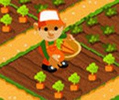 Meyve Sebze Yetiştirme ve Satma oyunu oyna