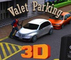 Vale Park 3D oyunu oyna